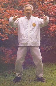YU YONG NIAN EBOOK